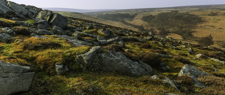The beauty of the North Yorkshire Moors