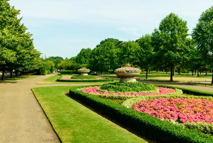 Romance in Regents Park