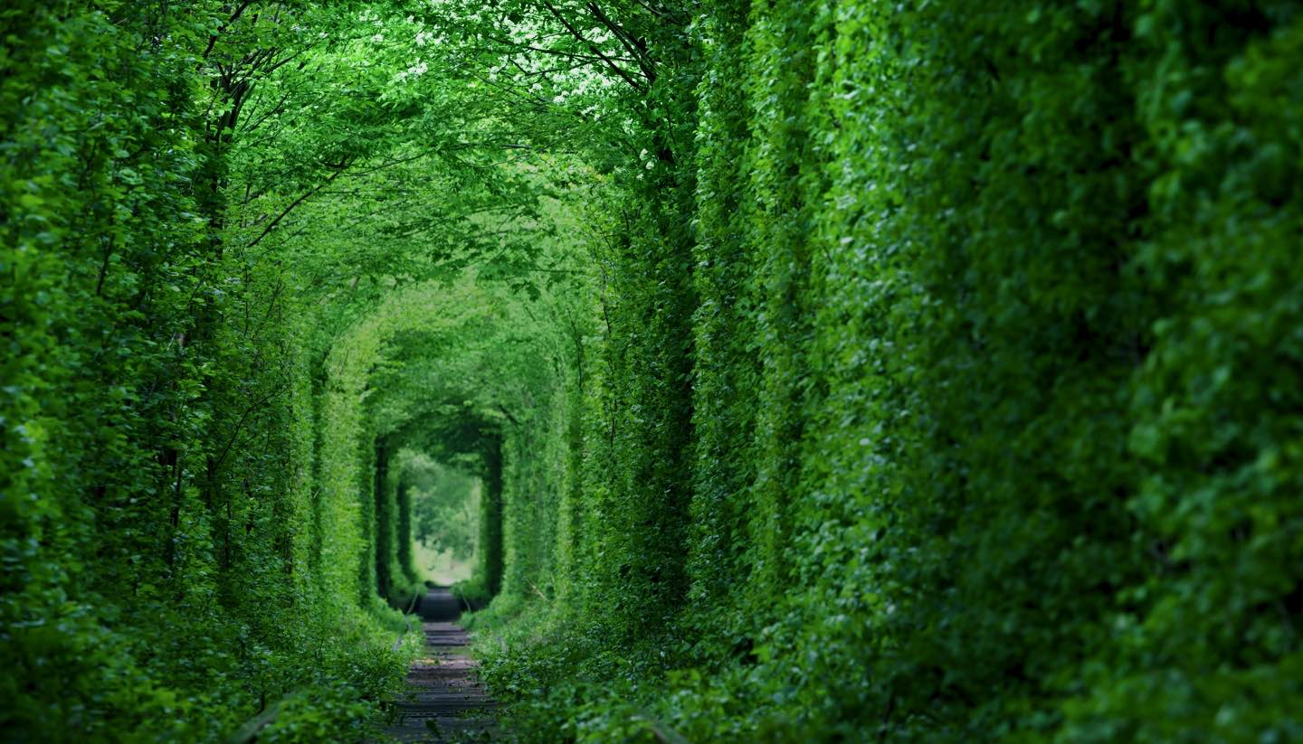Home - Tunnel of Love, Ukraine