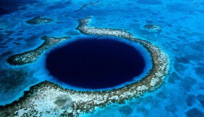 20 wonders underwater world