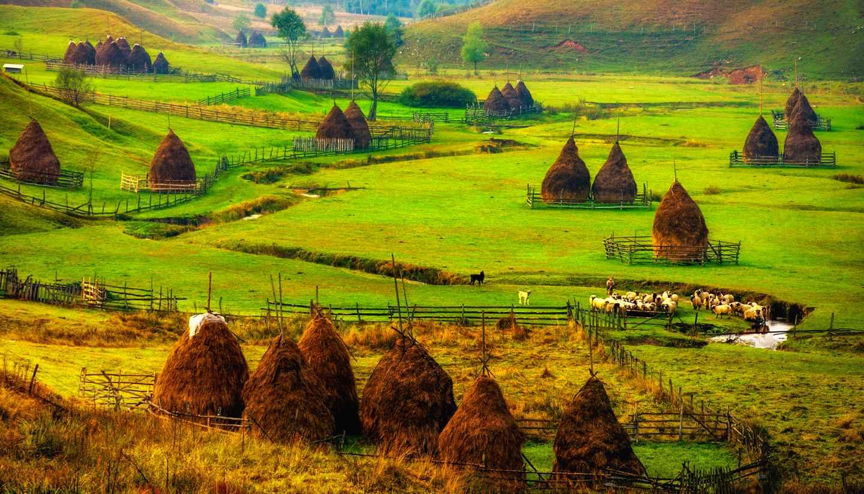 Romania - Mountain landscape in Fundatura Ponorului, Romania