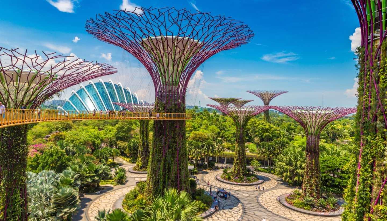 Singapore City - Gardens by the Bay, Singapore
