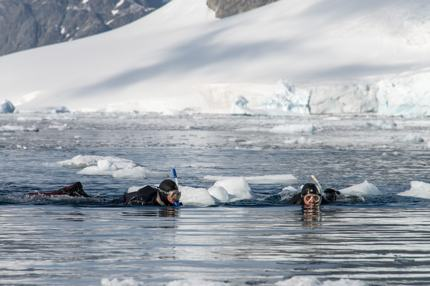 Snorkelling in Antartica
