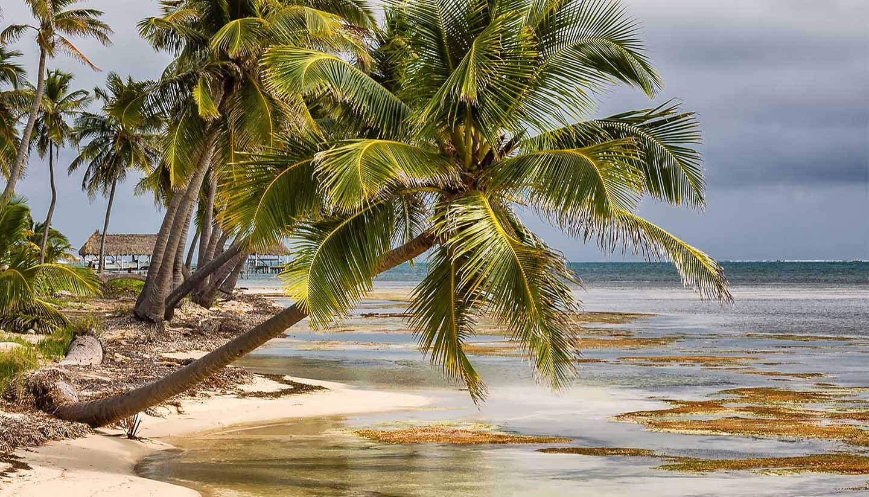 Belize - Ambergris Caye, Belize