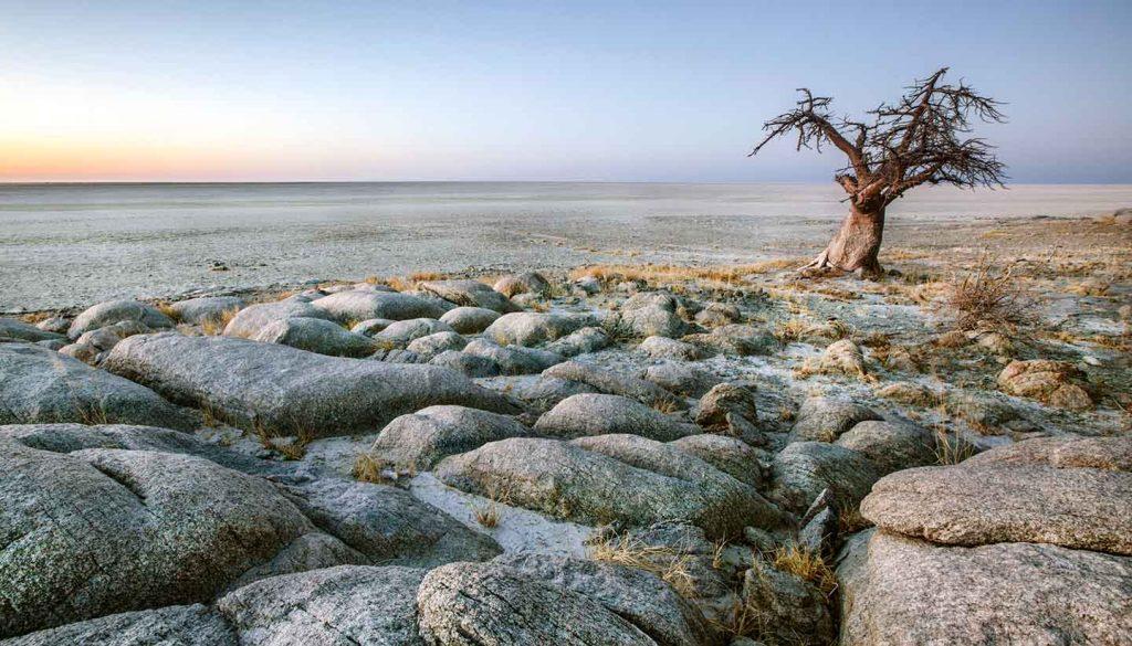 Botswana - MakgadikgadiNP, Botswana