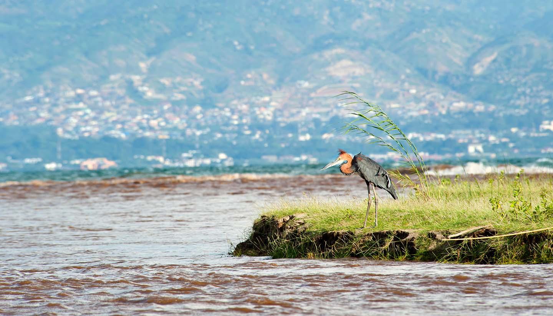 Burundi - Ruzizi River, Burundi