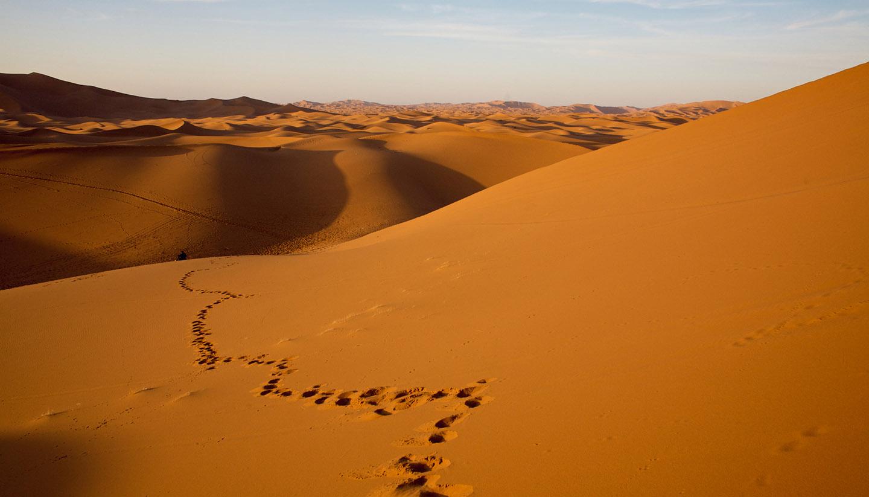 Mauritania - Footprint in desert dunes, Mauritania