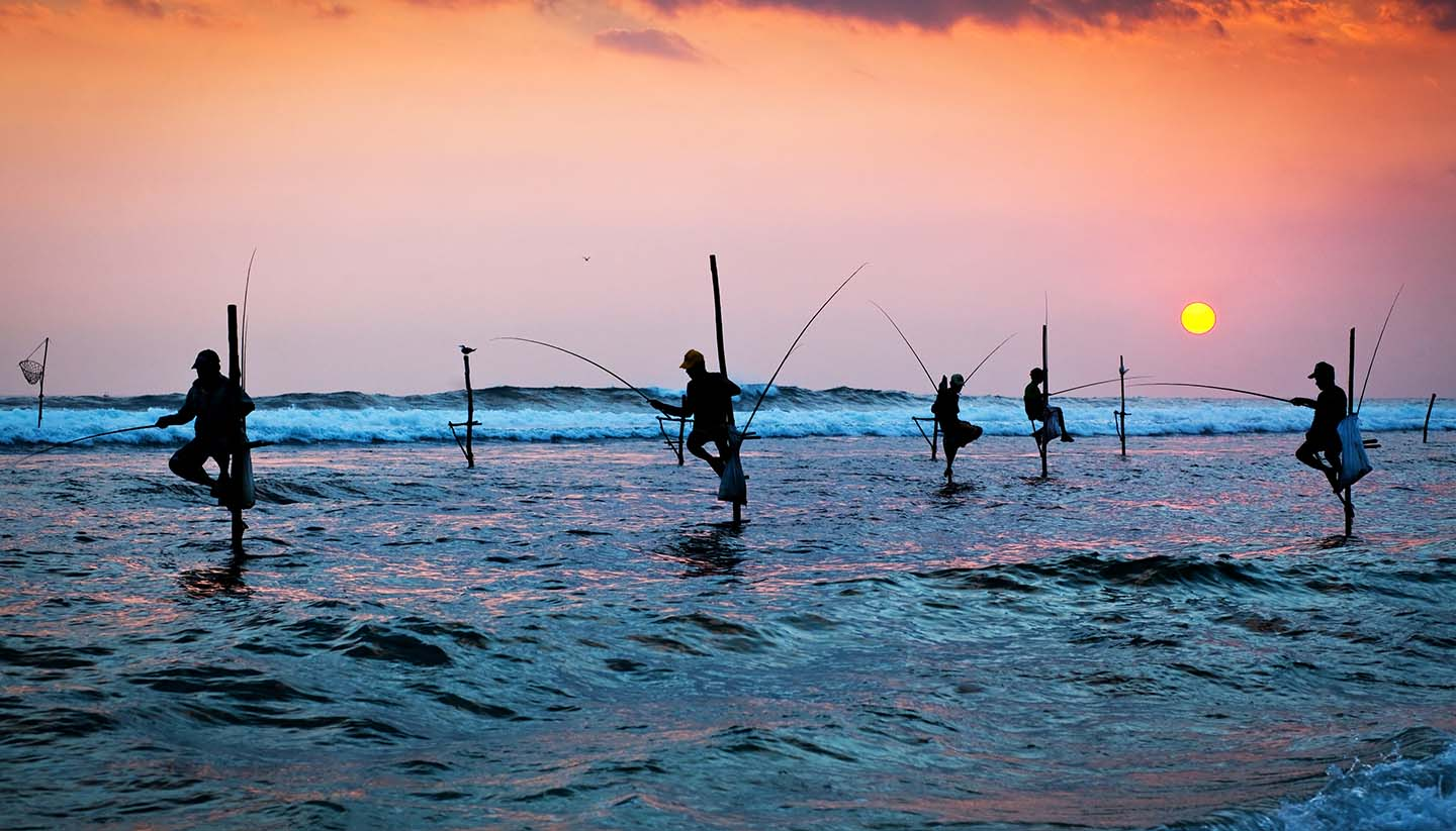 Sri Lanka - Traditional Stilt Fishermen, Sri Lanka