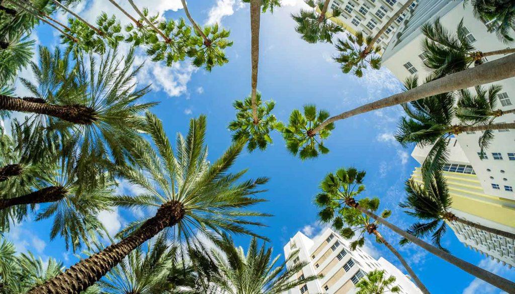 Florida - Miami Beach, Florida, USA