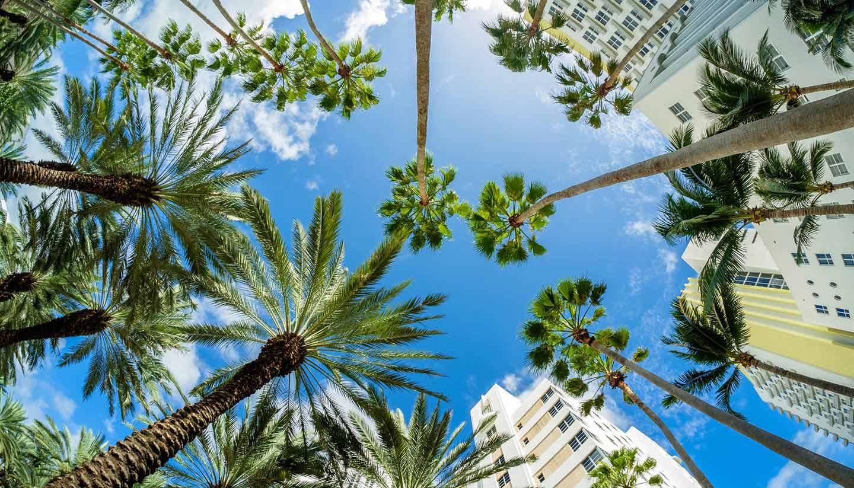 Miami - Miami Beach, Florida, USA