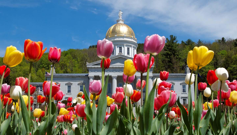 Vermont - Montpelier Capital Building, USA