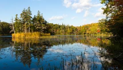 Shiretoko National Park in Hokkaido