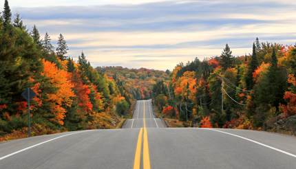 Road through Algonquin Provincial Park