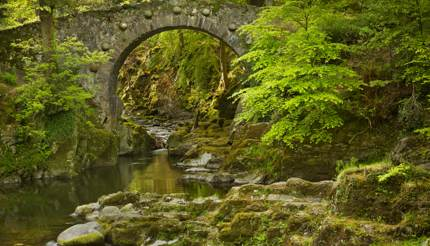 Foley's bridge over Shinma river in Tollymore Forest, Belfast