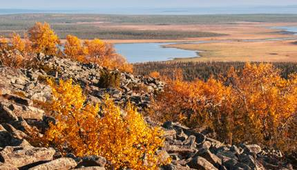 View from the top of a rocky mountain over Lapland landscape in autumn