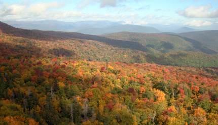 Catskills mountain