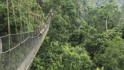 Woman on suspended bridge in Kakum National Park