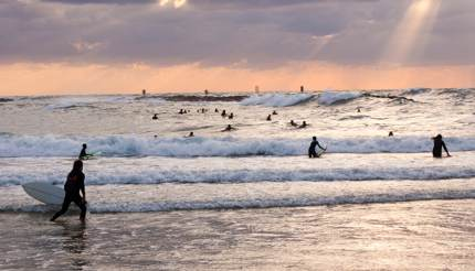 Surfers at sea in Jaffa
