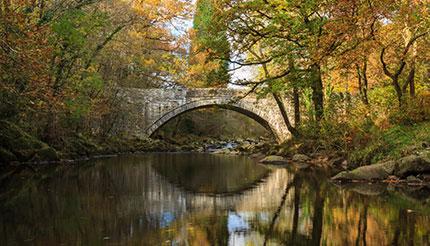 Mawddach River at Coed y Brenin Forest Dolgellau