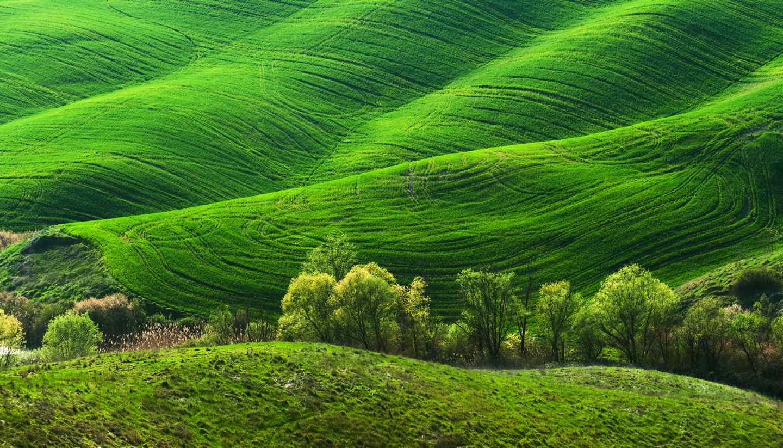 Home - Tuscany, Italy