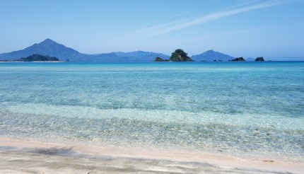 A pristine beach with turquoise waters