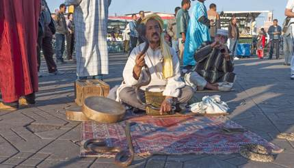 Two snake charmers at Jemaa el-Fna