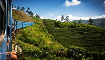 Train to Kandy through Nuwara Eliya