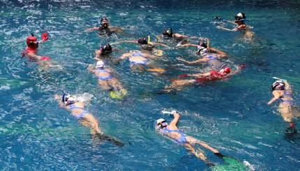 Women playing underwater hockey