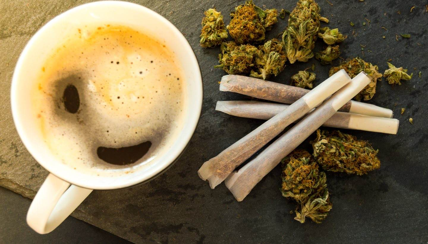 10 of the best coffeeshops in Amsterdam - Coffeeshops in Amsterdam