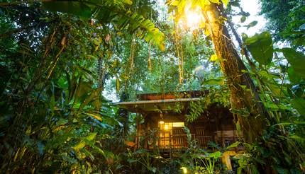 Eco lodge in the rainforest at Puerto Viejo de Talamanca, Costa Rica