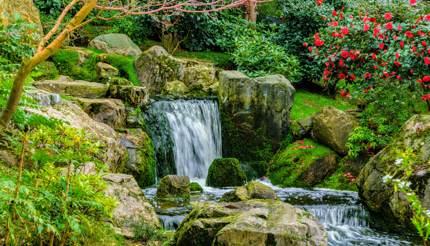 Waterfall at Kyoto Garden, London