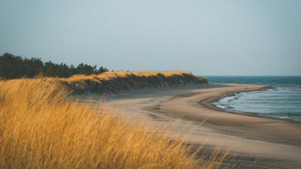 Paradise Beach, Gotland