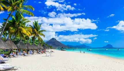 shu-Africa-Mauritius-1213878106-430x246
