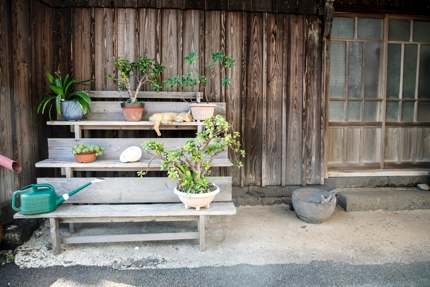 A tranquil corner in the Old Town, Ojika