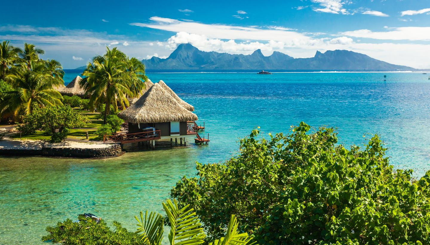 Where to go on holiday in July 2019 - shu-French-Polynesia-Tahiti-Palm-Trees-Bungalow-1153897237-1440x823