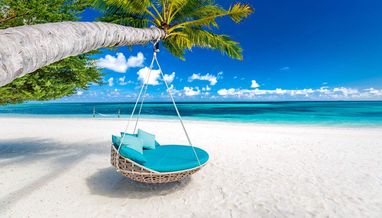 Home - Tropical beach