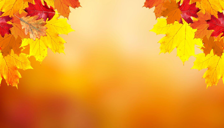 Home - Autumn