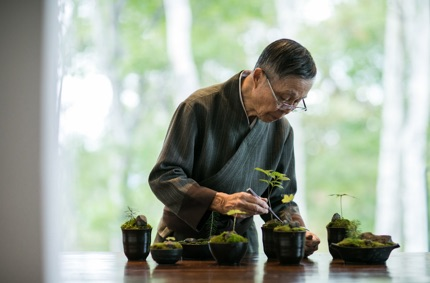 Man caring for plants - image from zaborin.com