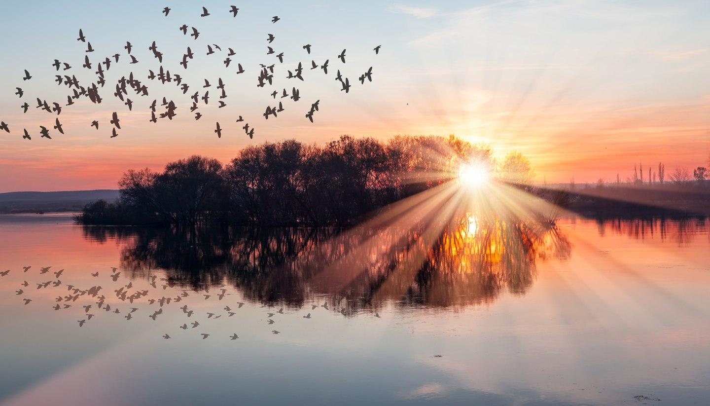 Home - Sunrise over a lake