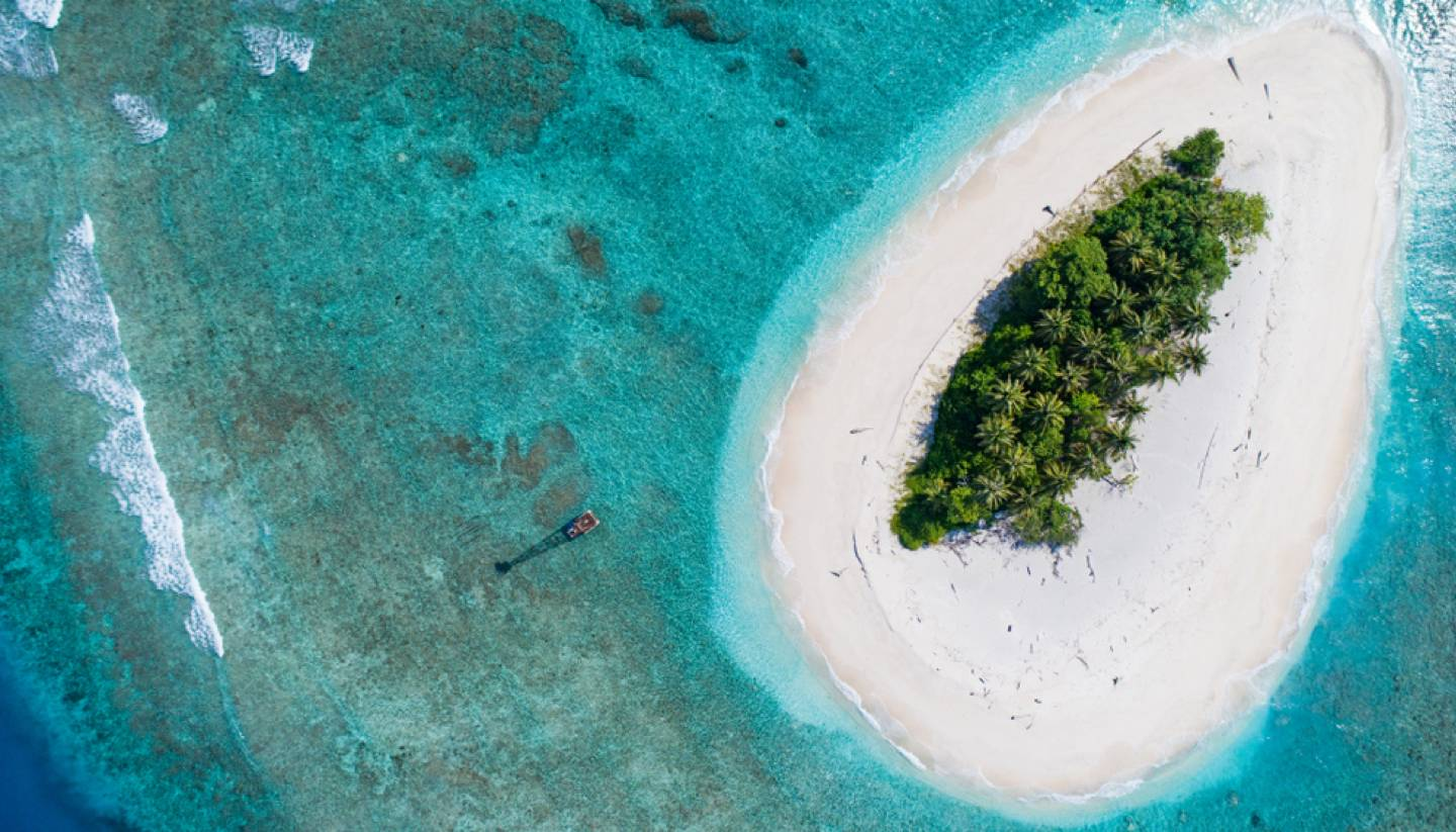How to survive on a desert island - A desert island