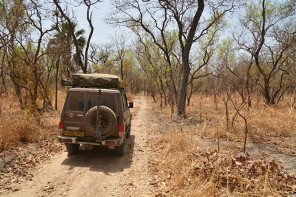 Exploring Parc National du Niokolo-Koba