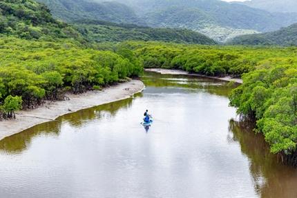 Iriomote-Ishigaki National Park