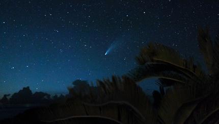 A night view in Iriomote-Ishigaki National Park
