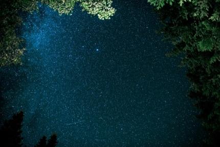 A night view in Kielder Forest