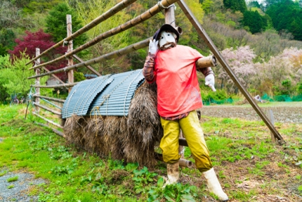 The 'Scarecrows Village' of Nagoro
